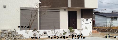正面(植物)文字5