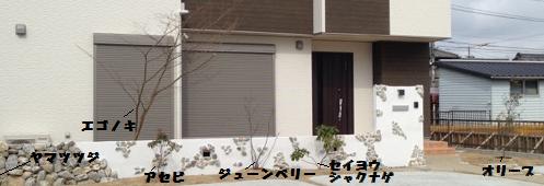 正面(植物)文字6