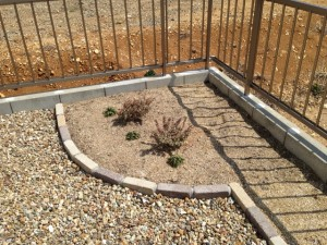 庭づくり 植栽スペース