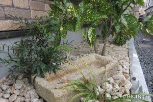 和室前植栽水鉢